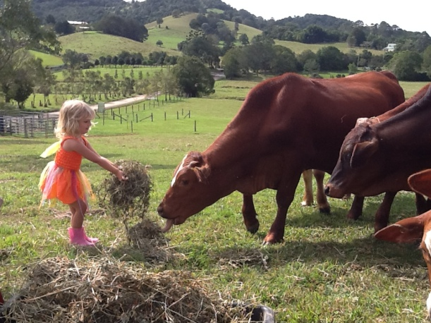 My little girl with my 'cow friends'